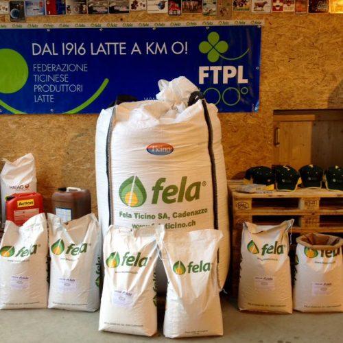 Fela Ticino SA novazzano