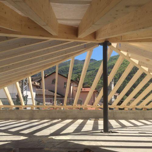 carpenteria bernet